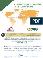 cluster do biodiesel sumario