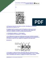 biología resuelto (1copia)