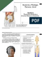 Anatomia.pdf+