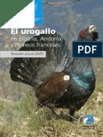 10_urogallo1