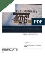 Auditoría Administrativa II