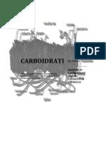 Nozioni Di Carboidrati Versione Aggiornata (B J Kakos)