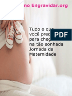 eBook ComoEngravidar.org1.0