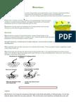 Bio Fertilizers 2
