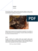 Animales_en_peligro_de_extincion.docx