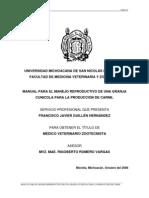 Manual Para El Manejo Reproductivo de Una Granja Cunicola Para La Produccion de Carne