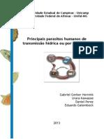 Principais parasitos humanos de transmissão hídrica ou por alimentos