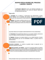 Principios Reguladores Del Proceso Laboral Vigente-Anita