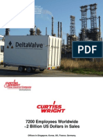 DeltaValve 2010 Customer Version
