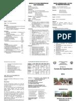 tripticocursos2014.pdf