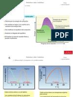 TEMAS 11, 12 y 13 - Metabolismo celular y catabolismo.ppt
