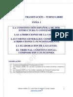 Tema01 Tram Libre