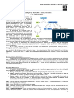bioqumicaii09-ciclodauriaarlindonetto-120627022145-phpapp02