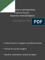 Problemas e Perspectivas Cultura Visual Metodologia 13-14 b