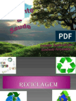 Ambiente e Saude Isaurinda Fernandes