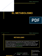 ppt-metabolismo 3