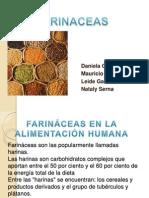 farinaceas (1)