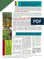 Boletin Informativo Pronunciamiento Transgenicos Guatemala(1)(2)