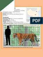 Valvert 2014_Wanhsien Tiger Data Sheet
