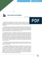 ACE_M1_AA4_L1_Autodirigido(1)