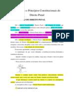 01.Introdução e Princípios Constitucionais do Direito Penal