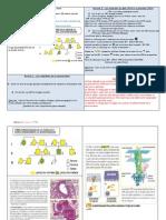 TP 1 Mucoviscidose