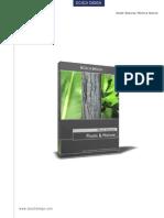DT-PN_pdf