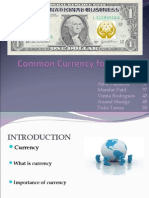 Common Currency - IB