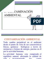 Cap Vi Sistema Contaminacion Ambiental