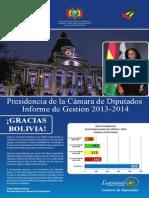 Separata Informe final de la Gestión 2013 - 2014 - Betty Tejada Soruco
