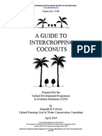 18 a Guide to Intercropping Coconuts
