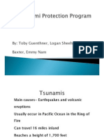 tpp project