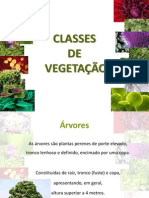 Classes de Vegetacao 4 - Arvores