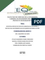 Proyecto Integrador VIII.docx