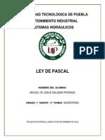 UNIVERSIDAD TECNOLÓGICA DE PUEBLA REPORTE