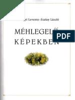 Halmágyi Levente, Szalay László - Méhlegelő képekben
