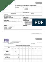 Plan Operativo SERVICIO 2013 Proyecto