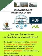 Servicios Ambientales Pemex INE