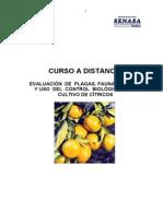 CURSO  CITRICOS
