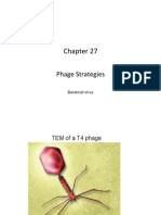 #15 Ch 27_Phage Strategies