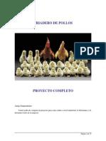 Manual Cria de Pollos de Engorde