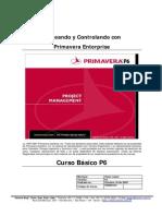 Primavera P6 Curso Basico Espanol