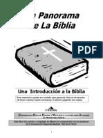 INTRODUCCION PANORAMA.pdf