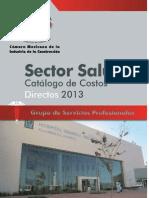 Salud-2013