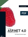 Tecnologías ASP.NET 4.0 (saltando desde la versión 2.0)