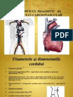 Curs 6 Cardiac 2