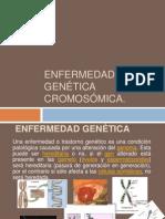 Enfermedad genética ok