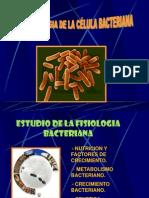 Nutricion Bacteriana Mama