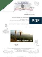 דף מידע לתולדות המשפחה 33