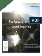 Present ExpoAmb2011.pdf